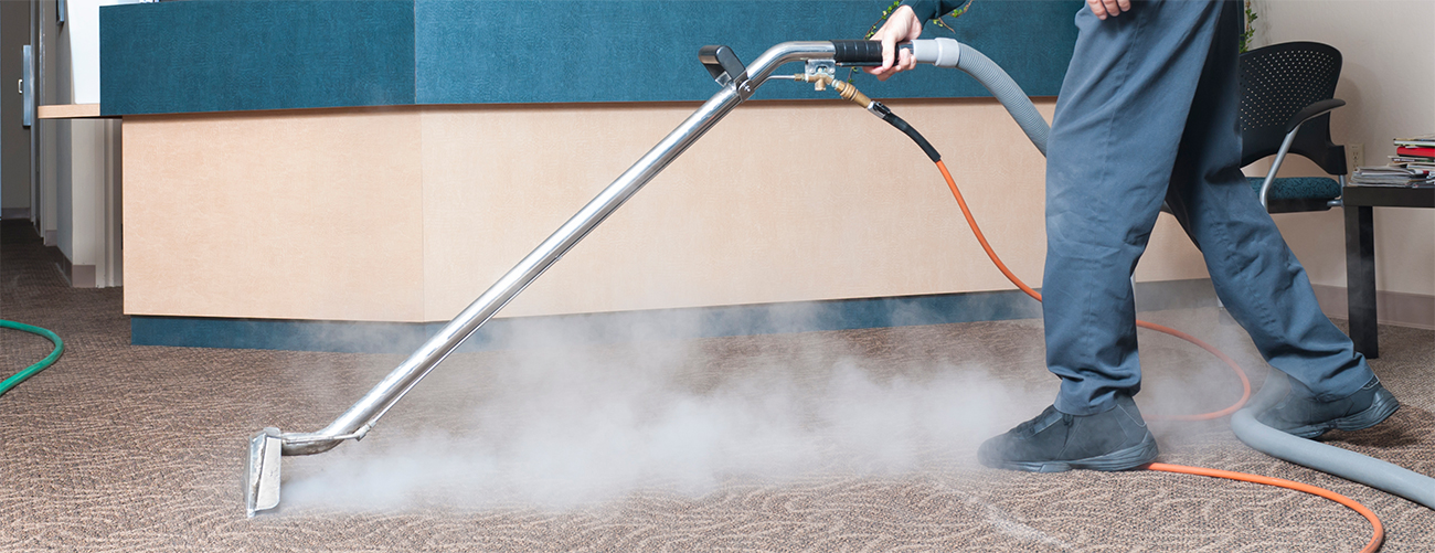 Carpet Cleaning Services Furniture Cleaning Service